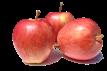 manzana-gala2