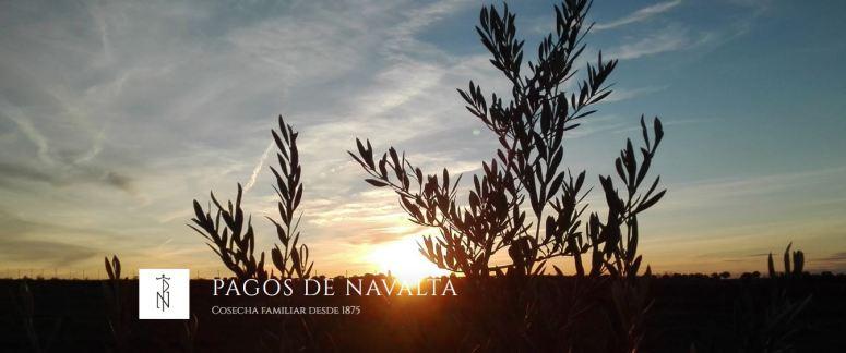 banner pagos de navalta