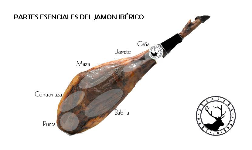 partes esenciales jamon iberico